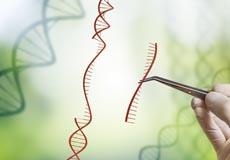 newsletter gene drive